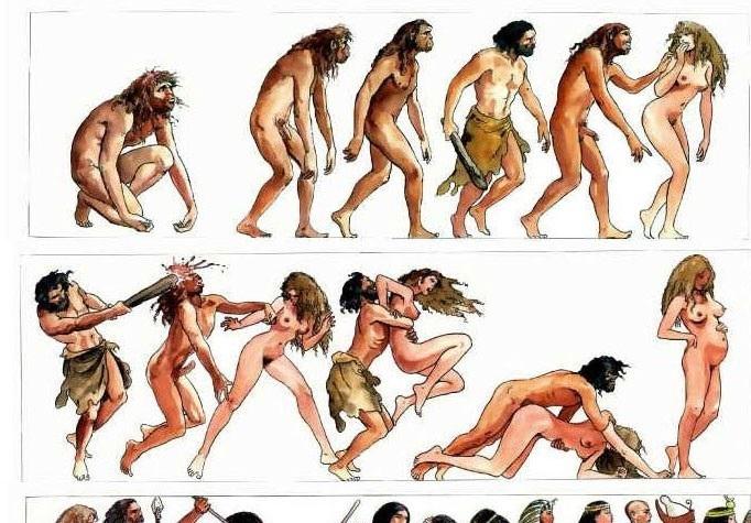 История человечества. Иллюстрации развития от каменного века до современно