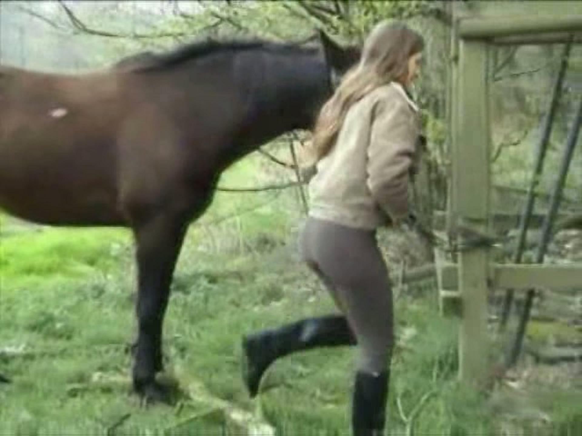 Cute zoofilia horse asshole story